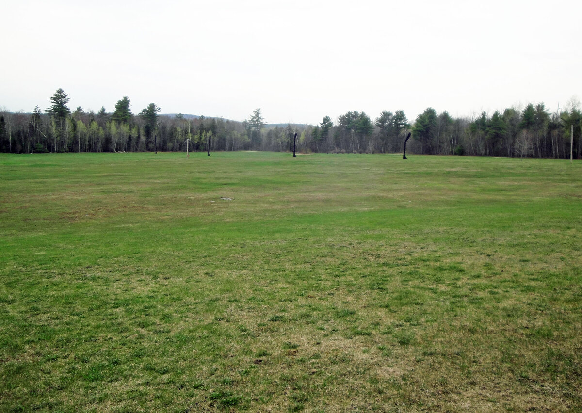 16.9+/- Acres with Ranch & 3-Car Garage for Sale