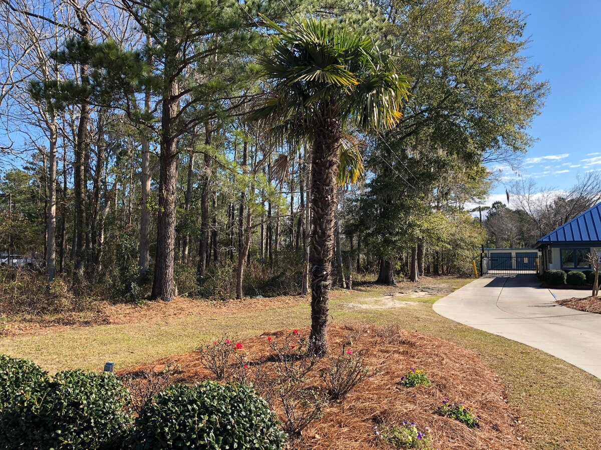 1711 Old Trolley Rd Summerville Sc Vacant Land For