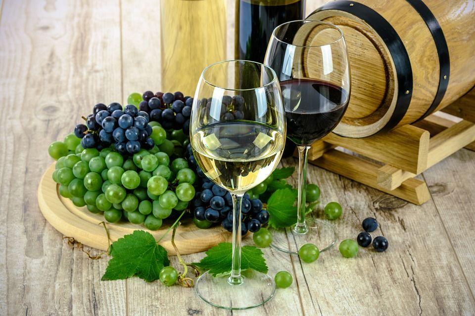 Established Winery and Vineyard