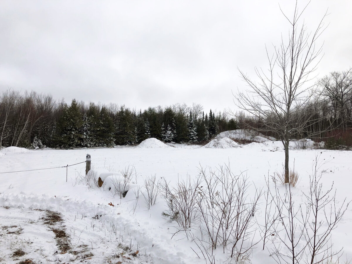 5-ACRE LOT ON ROUTE 27 FOR SALE