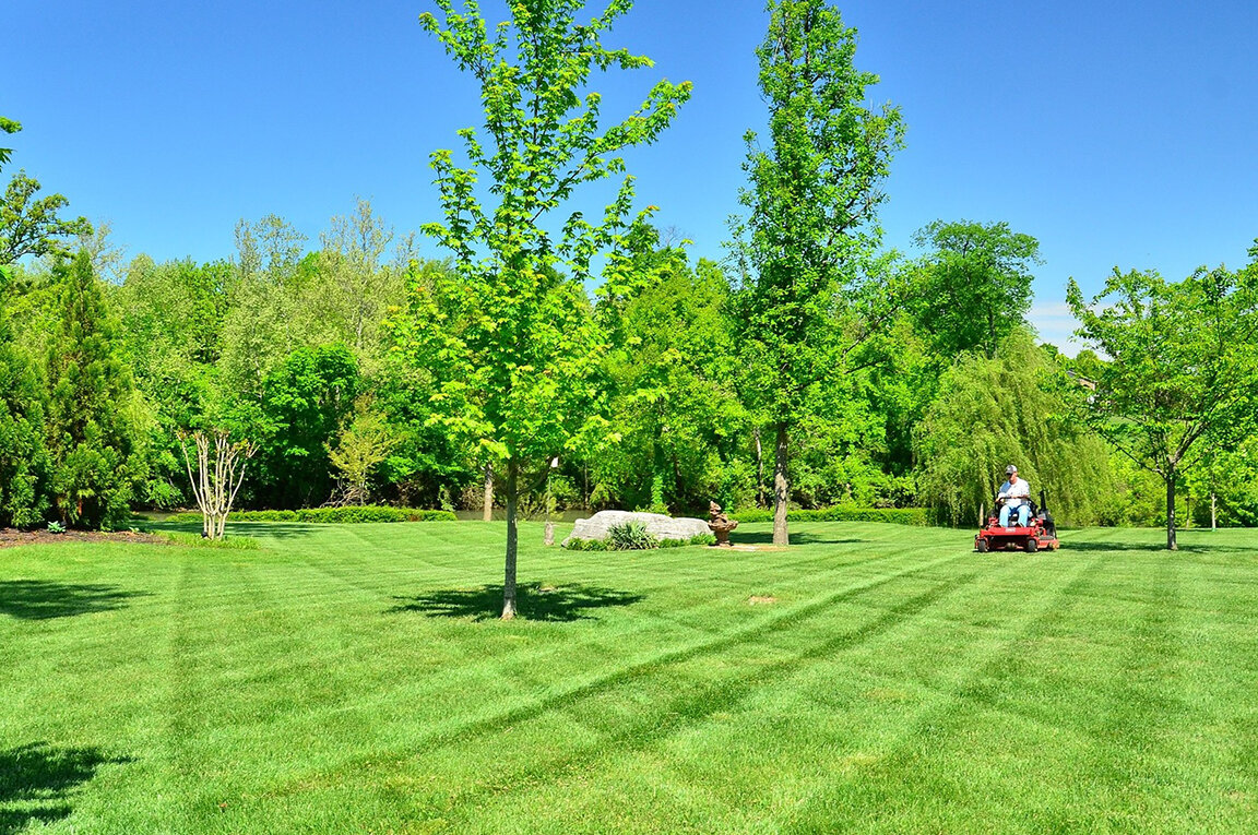 Profitable Landscaping Business in Central Maine
